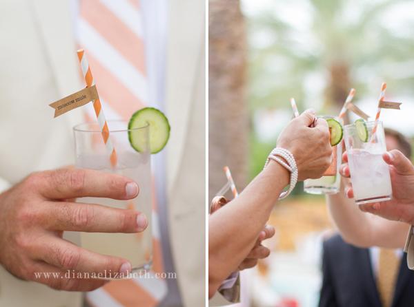 phoenix-arizona-wedding-photographer-saguaro-scottsdale042