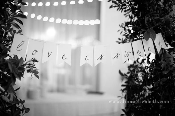 phoenix-arizona-wedding-photographer-saguaro-scottsdale048