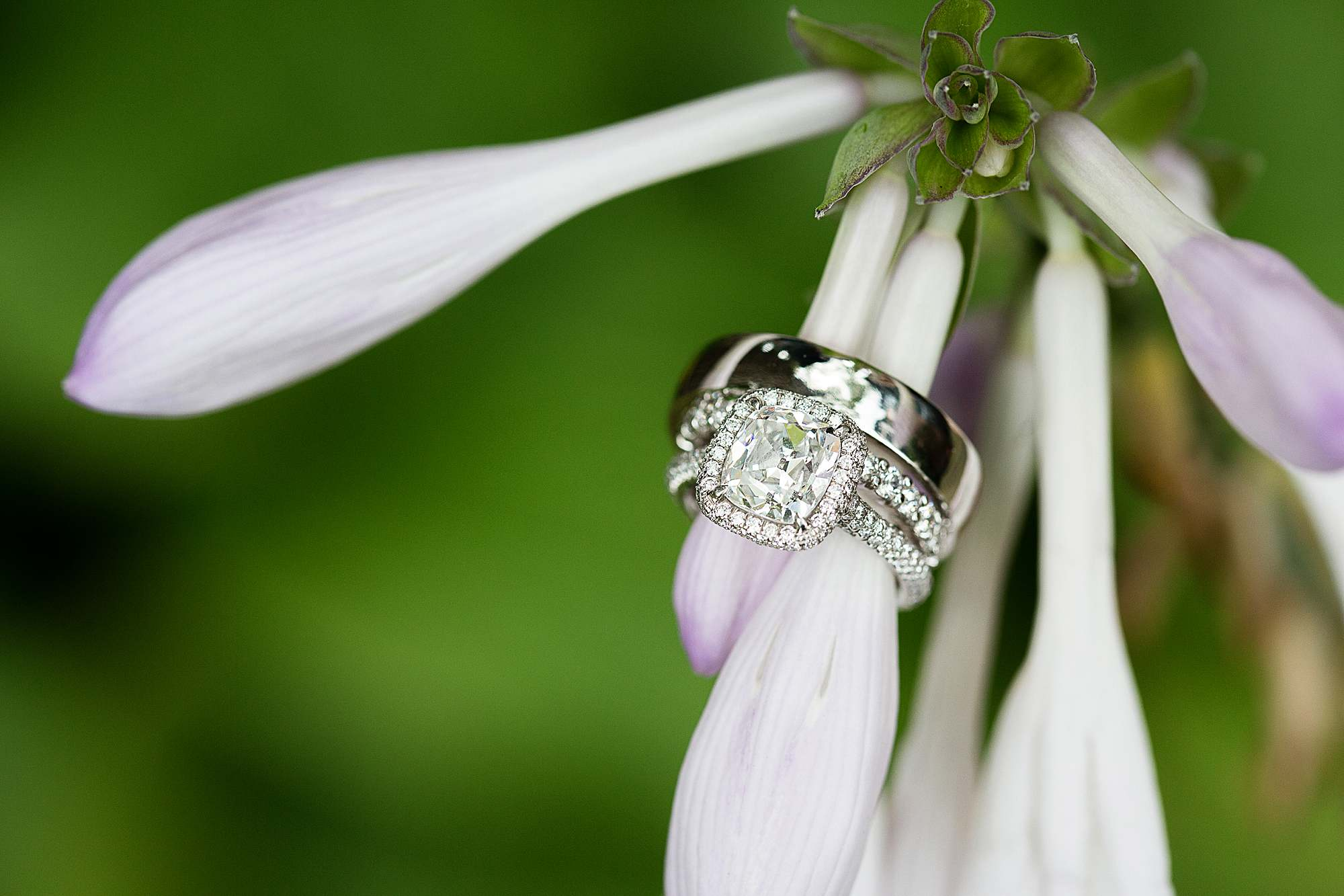 wedding ring shot using 100 macro lens review