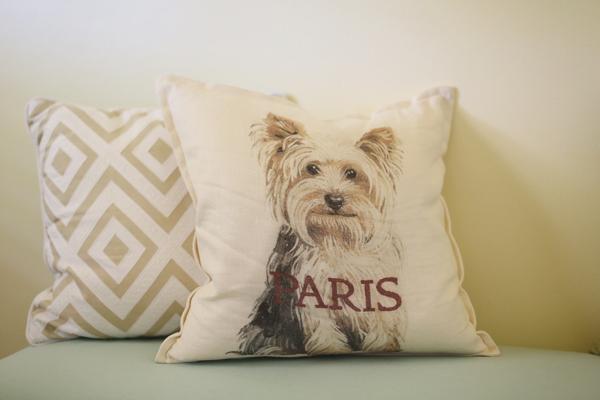 custom-dog-pillow-pottery-barn