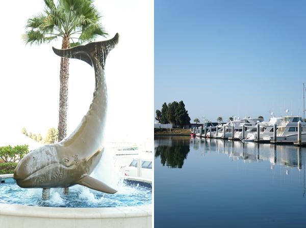 sony-nex-5r-sony-club-blogger-lifestyle-san-diego-del-mar-sailing019