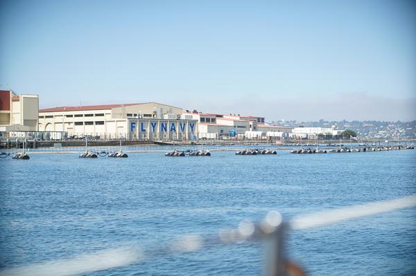 sony-nex-5r-sony-club-blogger-lifestyle-san-diego-del-mar-sailing022