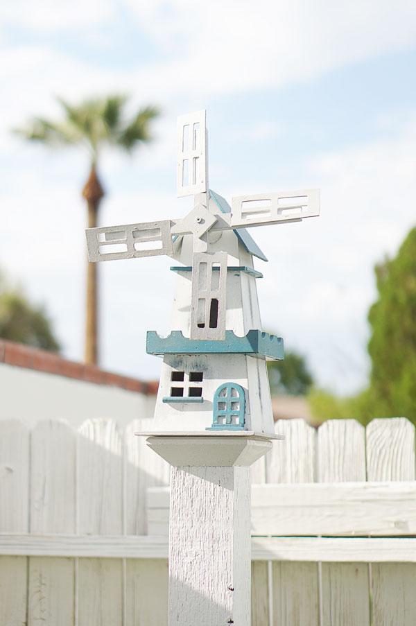 backyard-phoenix-garden-urban-farming-130