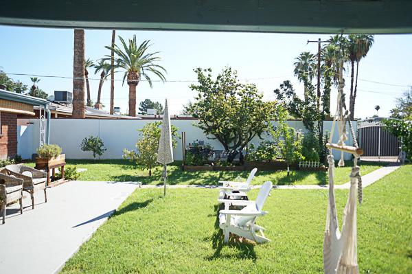 backyard-phoenix-garden-urban-farming-tree-removal-116