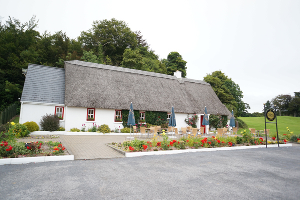ireland-homes-cottages-style-016