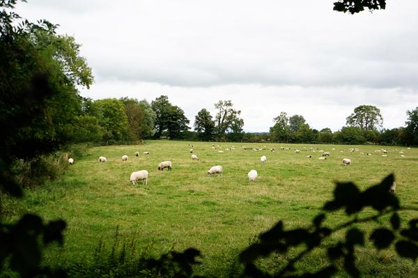 ireland-travel-blogger-republic-of-ireland-northern-ireland-castle-tour-tips-photos001