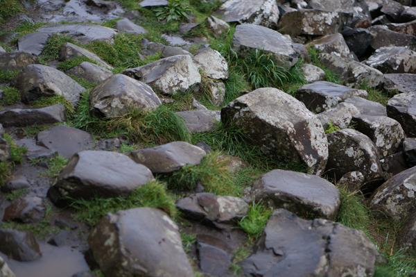 ireland-travel-blogger-republic-of-ireland-northern-ireland-castle-tour-tips-photos024