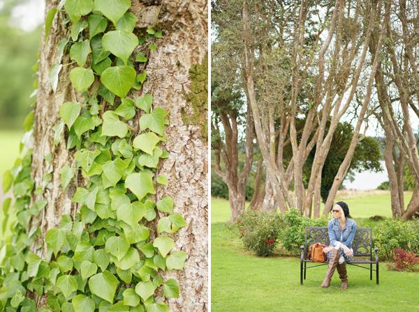 ireland-travel-blogger-republic-of-ireland-northern-ireland-castle-tour-tips-photos033
