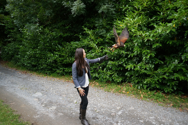 ireland-travel-blogger-republic-of-ireland-northern-ireland-castle-tour-tips-photos047