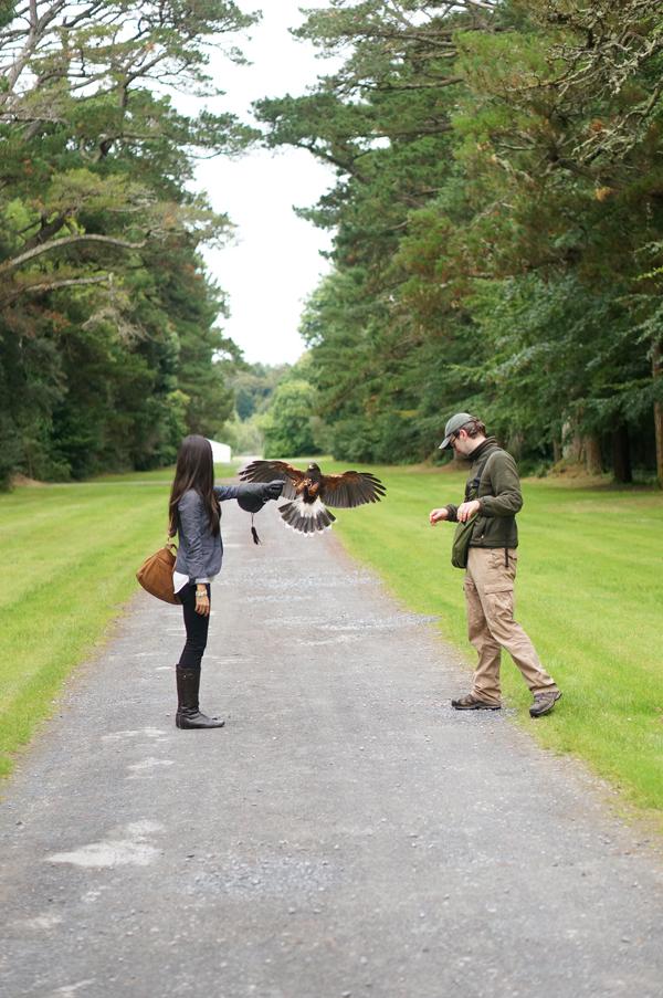 ireland-travel-blogger-republic-of-ireland-northern-ireland-castle-tour-tips-photos048