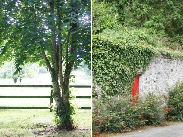ireland-travel-blogger-republic-of-ireland-northern-ireland-castle-tour-tips-photos050