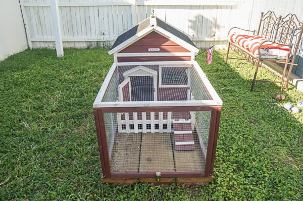 rabbit-run-hutch-bunnies-chicken-coop-run-area-ideas-114