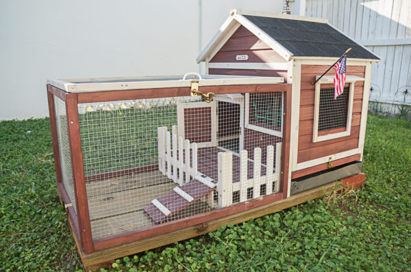 Our Rabbit Run Future Chicken Coop Area Diana Elizabeth