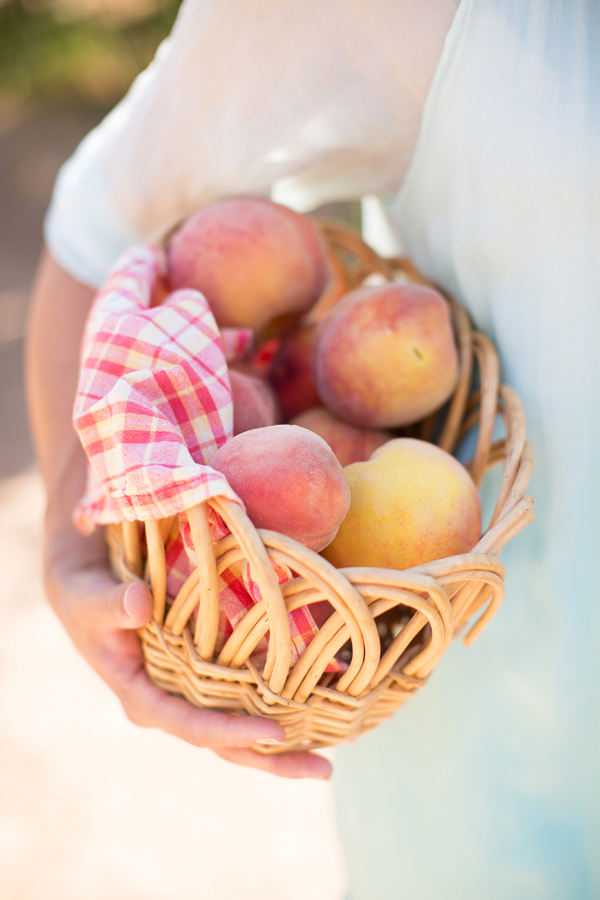 schnepf-farms-peach-orchard-fruit-shoot-picking-diana-elizabeth-photography-007