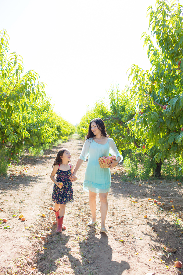 schnepf-farms-peach-orchard-fruit-shoot-picking-diana-elizabeth-photography-011