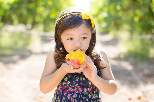 schnepf-farms-peach-orchard-fruit-shoot-picking-diana-elizabeth-photography-020