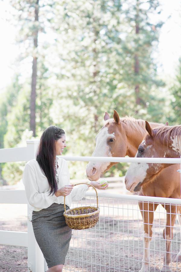 phoenix-scottsdale-arizona-california-placer-county-grass-valley-cool-western-english-equatrian-horse-equine-diana-elizabeth-photography007