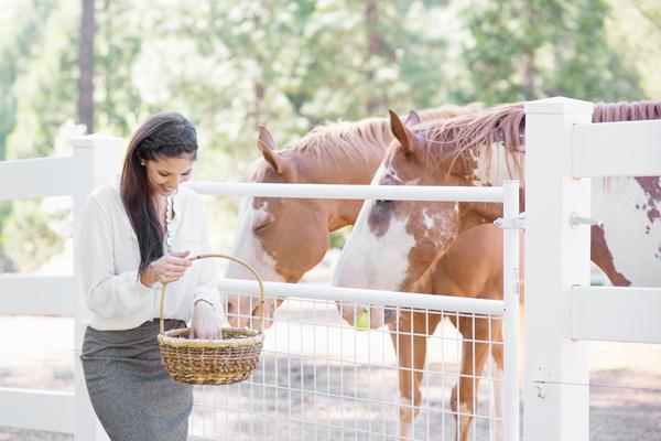 phoenix-scottsdale-arizona-california-placer-county-grass-valley-cool-western-english-equatrian-horse-equine-diana-elizabeth-photography008
