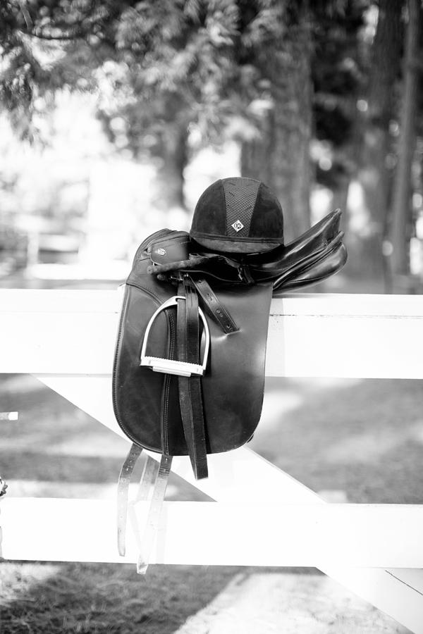 phoenix-scottsdale-arizona-california-placer-county-grass-valley-cool-western-english-equatrian-horse-equine-diana-elizabeth-photography021