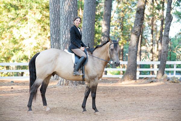 phoenix-scottsdale-arizona-california-placer-county-grass-valley-cool-western-english-equatrian-horse-equine-diana-elizabeth-photography027