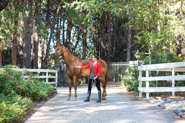 Rachel Grass Valley Equestrian