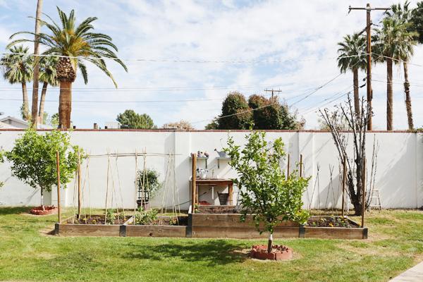 phoenix-garden-blogger-lifestyle-home-decor-spring-garden