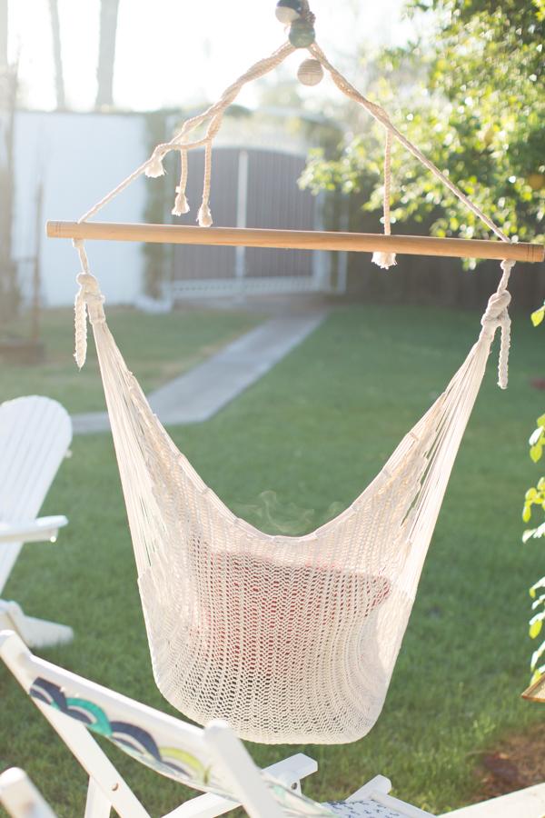 backyard-phoenix-gardener-blogger-112