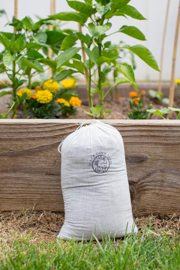black-gold-soil-gardening-uses-urban-farming-115