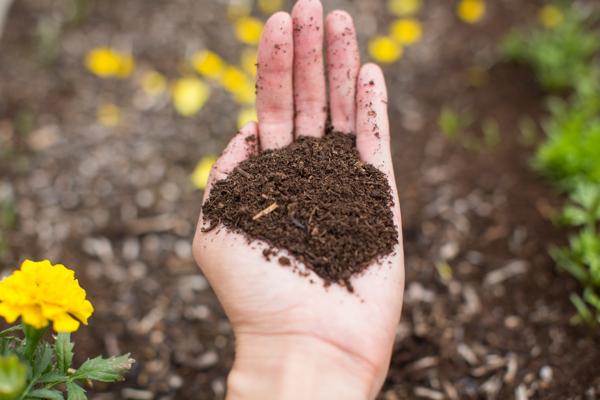 black-gold-soil-gardening-uses-urban-farming-118