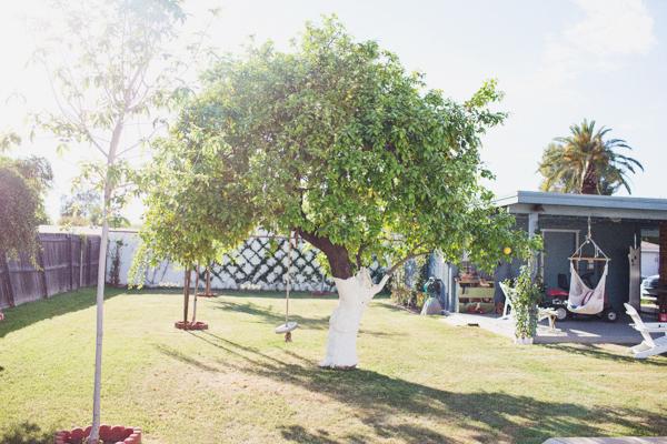 diana-elizabeth-outdoor-phoenix-arizona-garden-blogger-gardening-farming-125