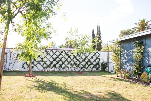 diana-elizabeth-outdoor-phoenix-arizona-garden-blogger-gardening-farming-127