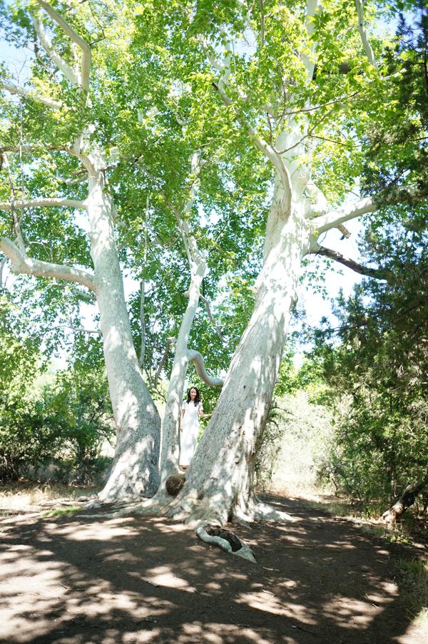 montezuma-castle-arizona-camp-verde-clear-water-creek-arizona-travel-blogger009