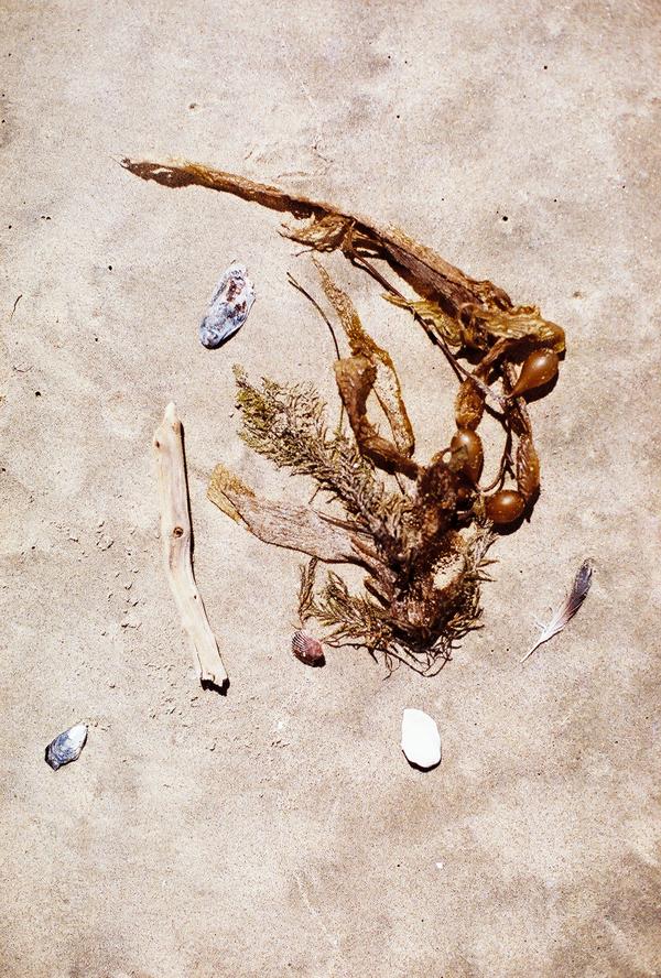 sandcastles-beach-sunshine-film-fuji-400h-diana-elizabeth-photography-newport-beach-gunn-swain-blanket030
