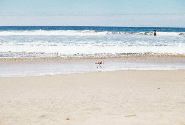sandcastles-beach-sunshine-film-fuji-400h-diana-elizabeth-photography-newport-beach-gunn-swain-blanket031