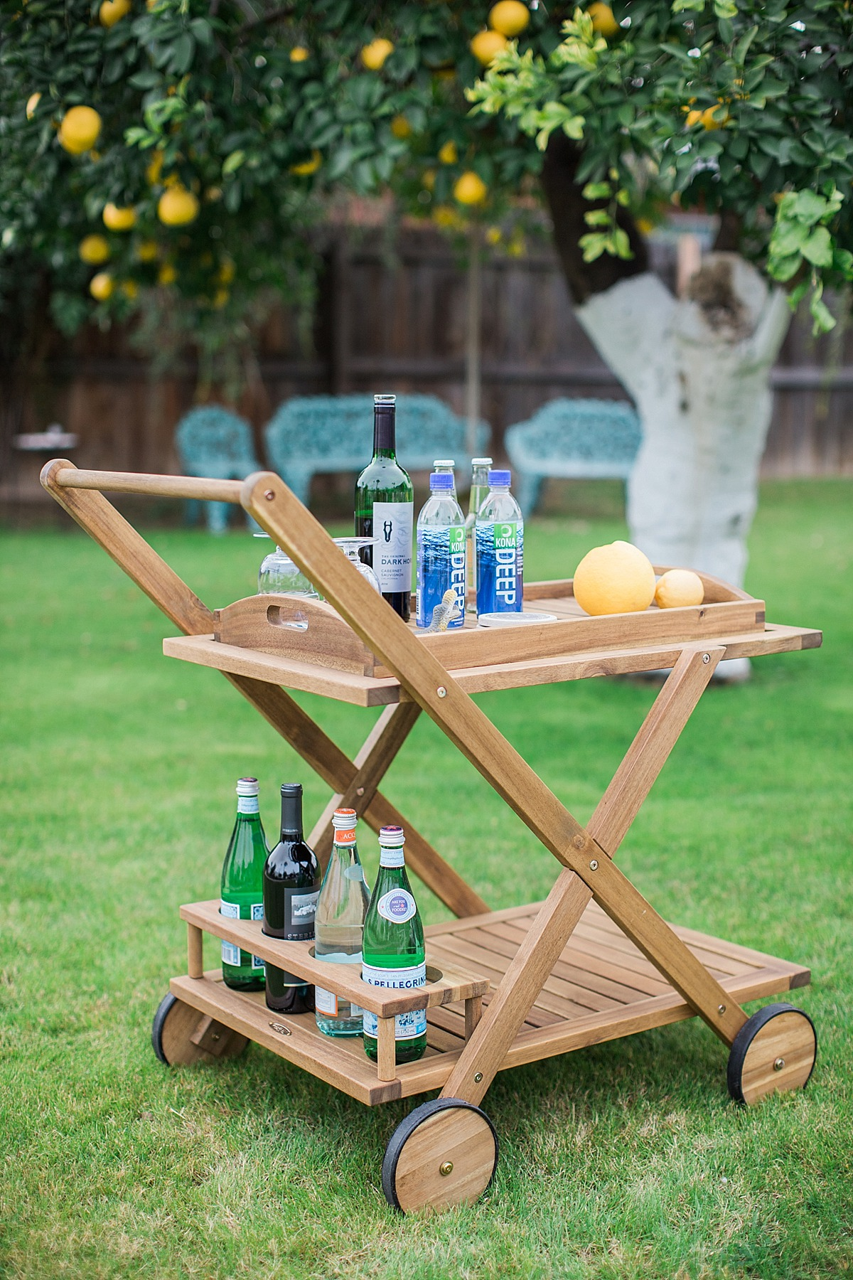 wayfair-bar-cart-2552