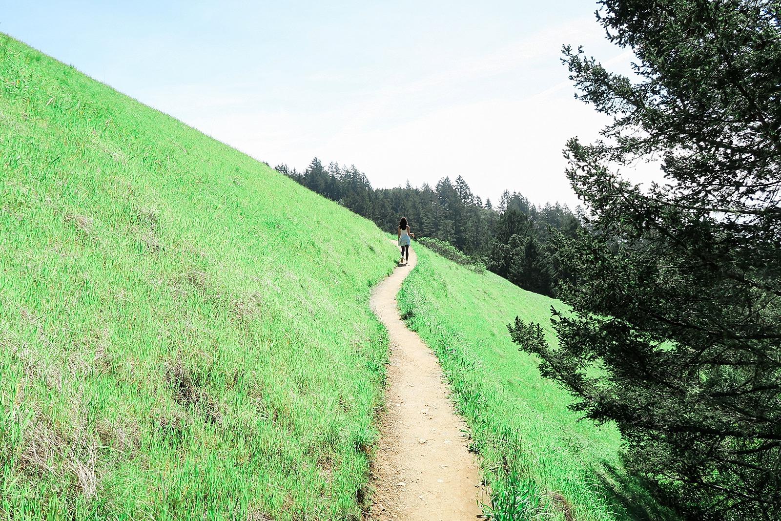 diana-elizabeth-blog-lifestyle-scotts-seed-sun-shade-lawn-games-setup-tutorial-0218