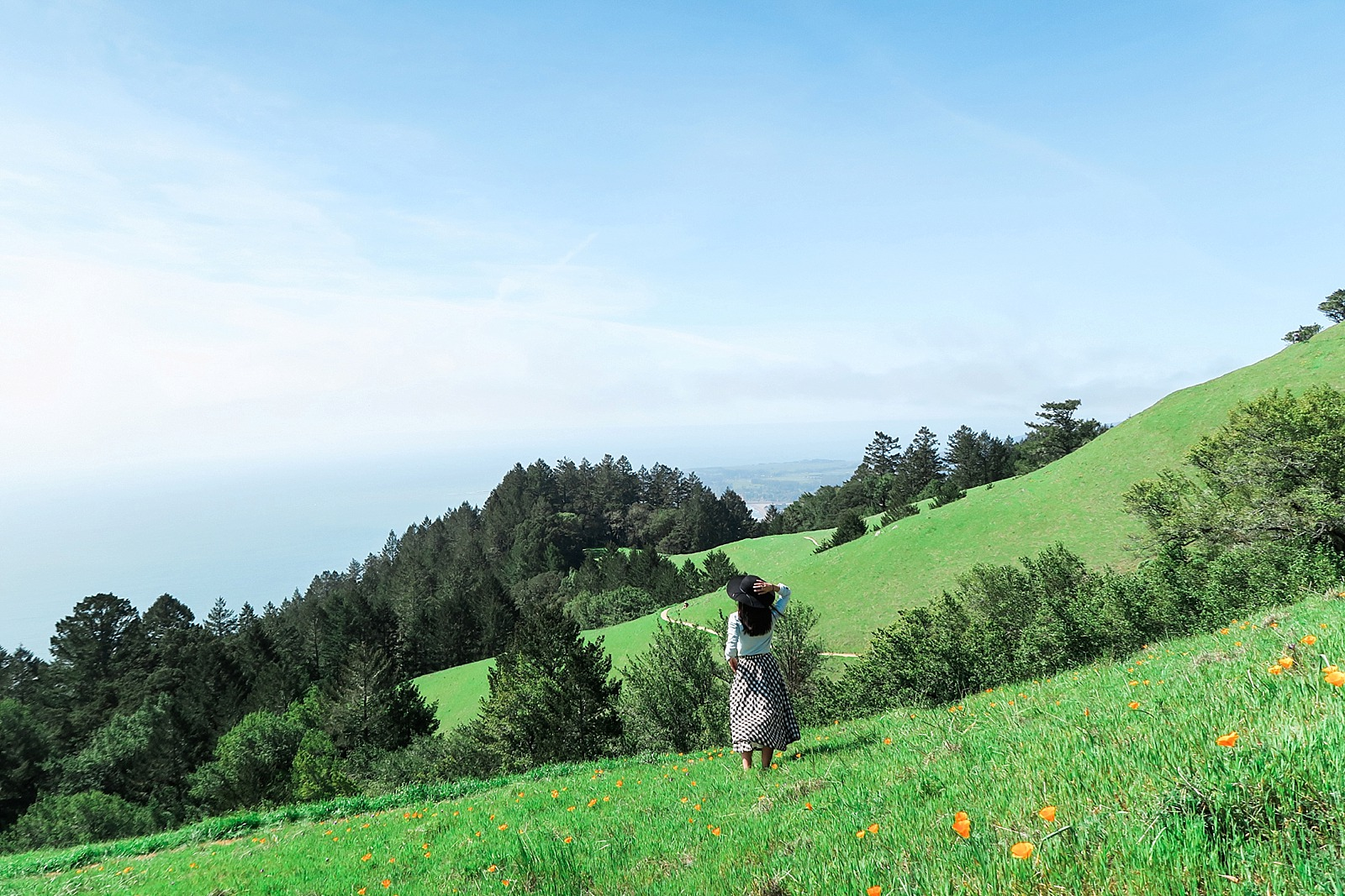 diana-elizabeth-coastal-trail-hike-miles-davis-trail-stenson-beach-0249