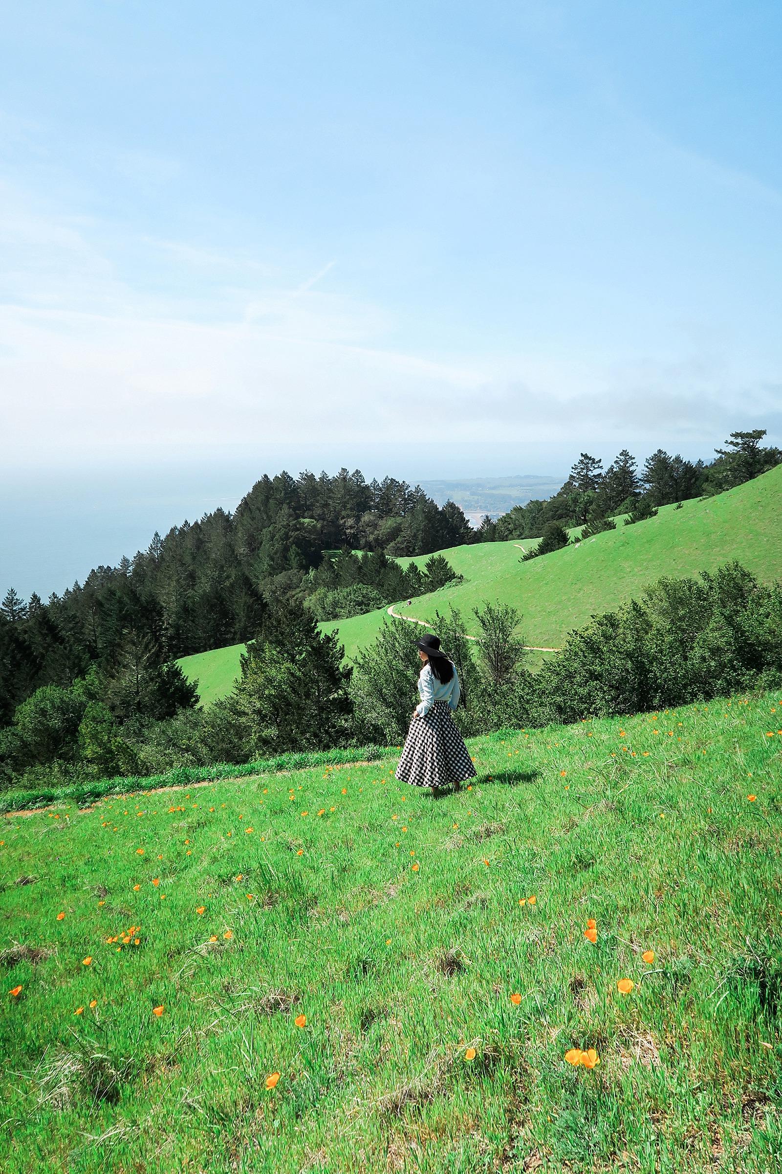 diana-elizabeth-coastal-trail-hike-miles-davis-trail-stenson-beach-0252