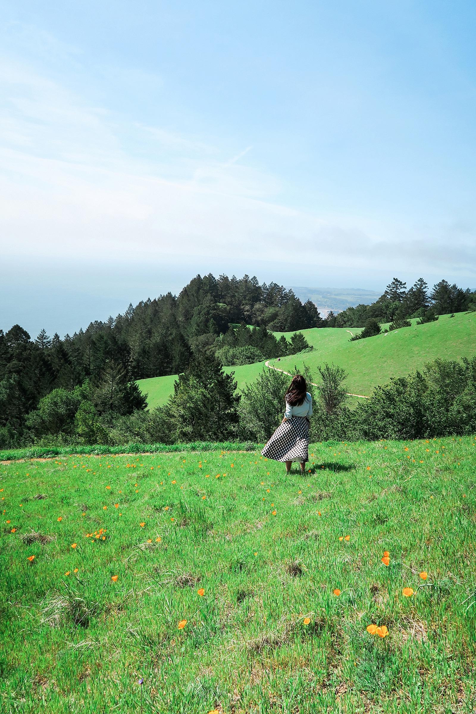diana-elizabeth-coastal-trail-hike-miles-davis-trail-stenson-beach-0255