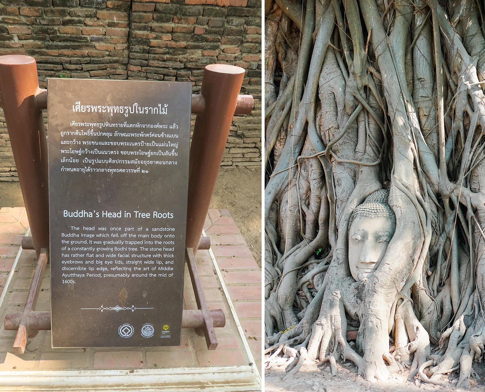 Thailand-diana-elizabeth-travel-blogger-phoenix-348