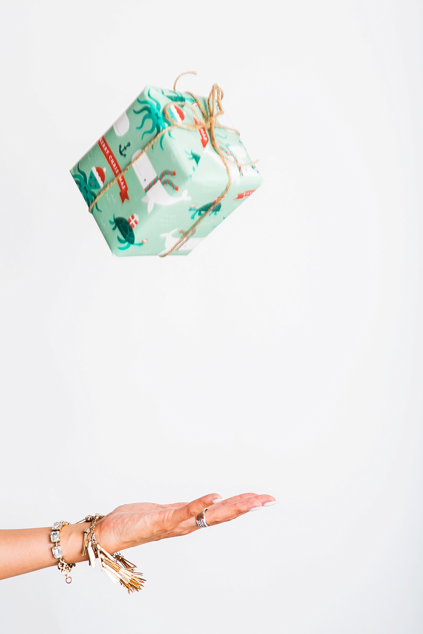 diana-elizabeth-blog-minted-custom-christmas-holiday-wrapping-paper-wurth-organizing-early-christmas-holiday-shopping-tips-2-7