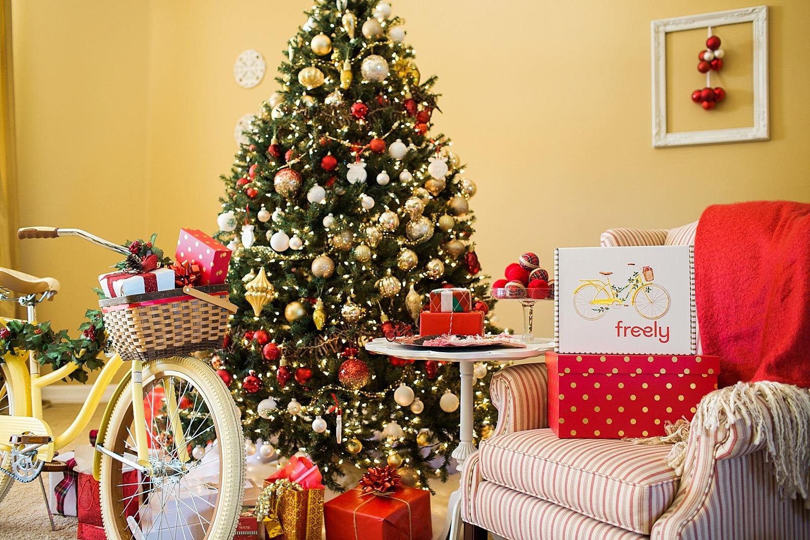 freely-2015-christmas-0454