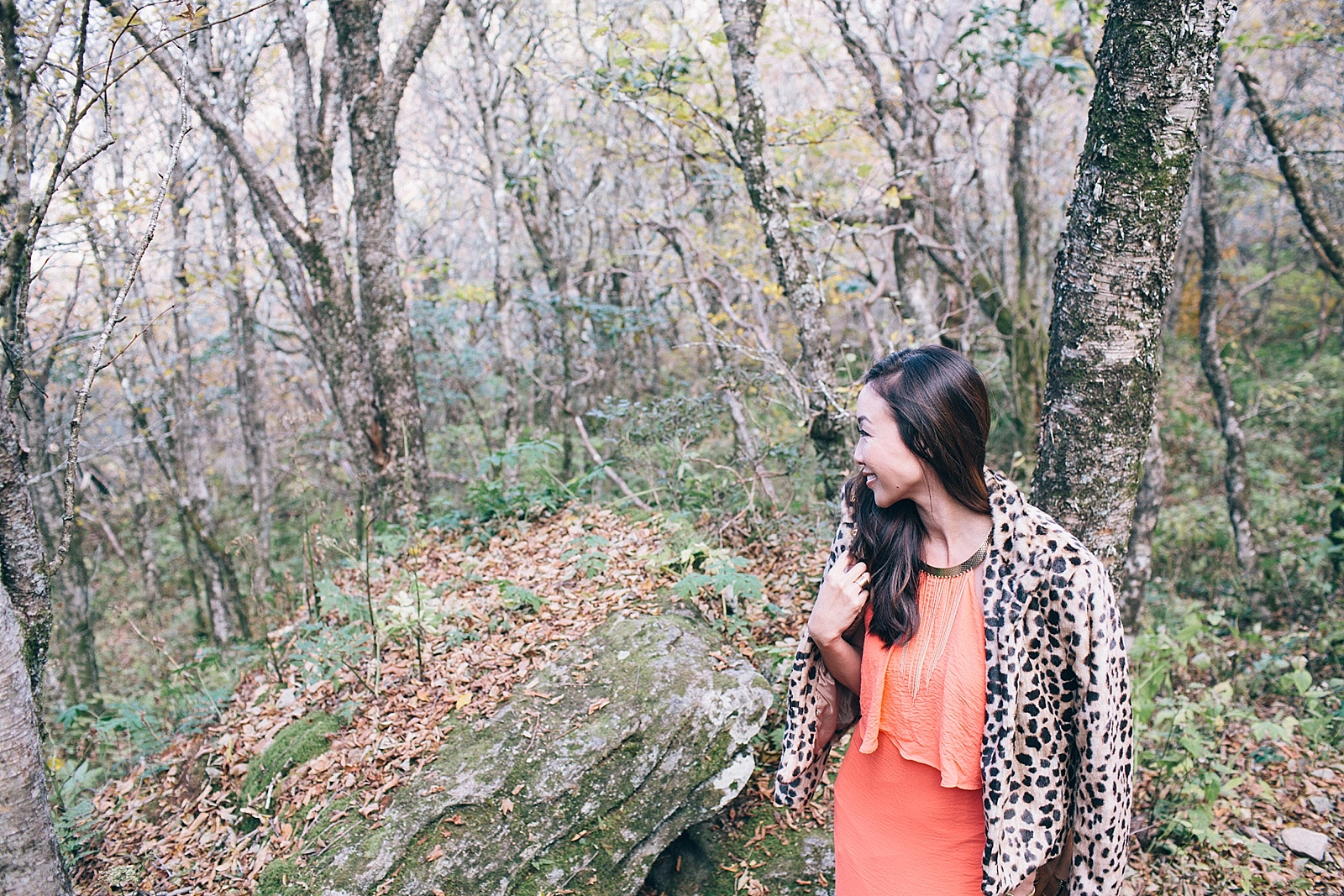diana-elizabeth-blog-travel-fashion-blogger-north-carolina-wedding-elopement-craggy-pinnacle-trail_0003