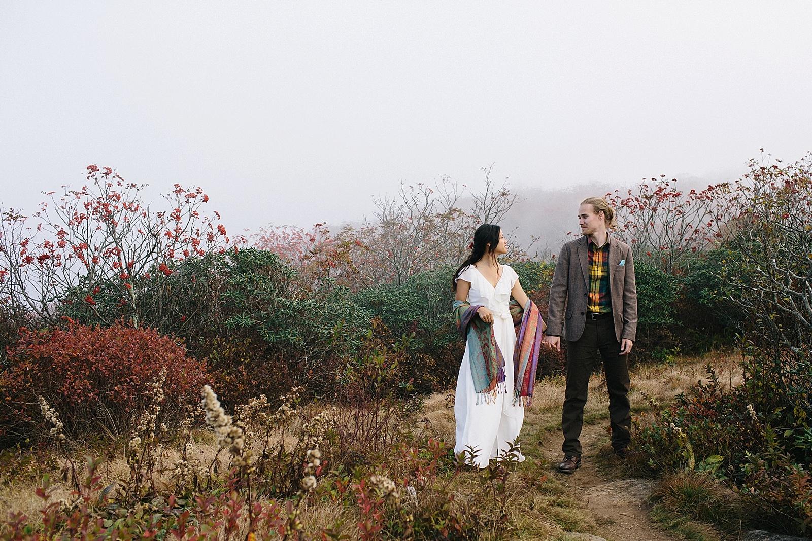 diana-elizabeth-blog-travel-fashion-blogger-north-carolina-wedding-elopement-craggy-pinnacle-trail_0009