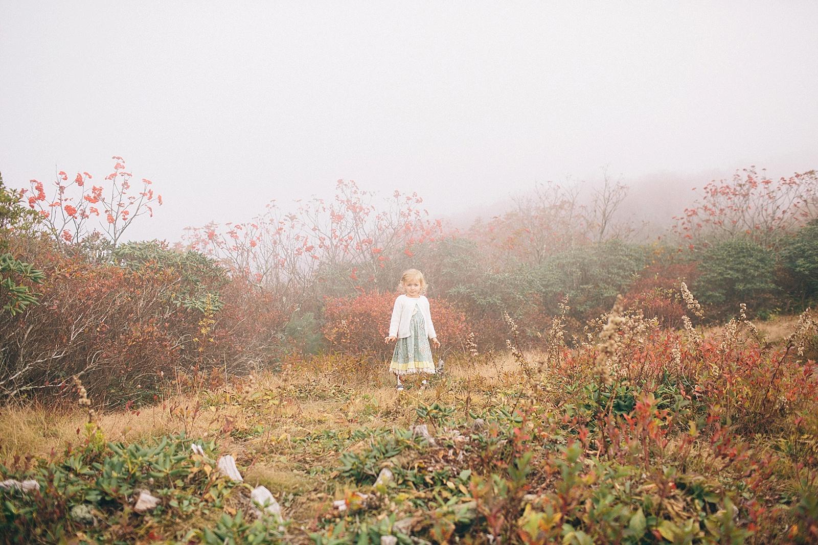 diana-elizabeth-blog-travel-fashion-blogger-north-carolina-wedding-elopement-craggy-pinnacle-trail_0010