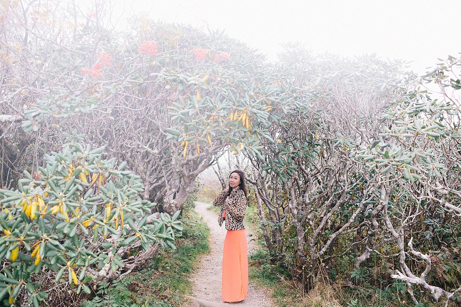 diana-elizabeth-blog-travel-fashion-blogger-north-carolina-wedding-elopement-craggy-pinnacle-trail_0013