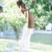 phoenix home garden blogger diana Elizabeth's garden grapefruit tree
