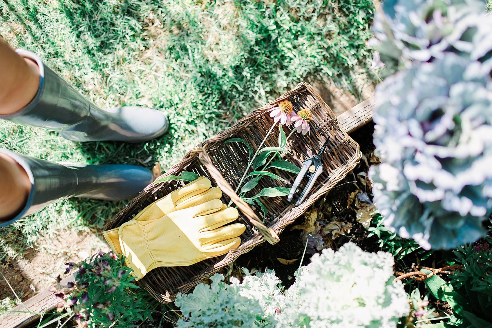 phoenix home garden blogger diana Elizabeth's garden flowers in a basket with gloves