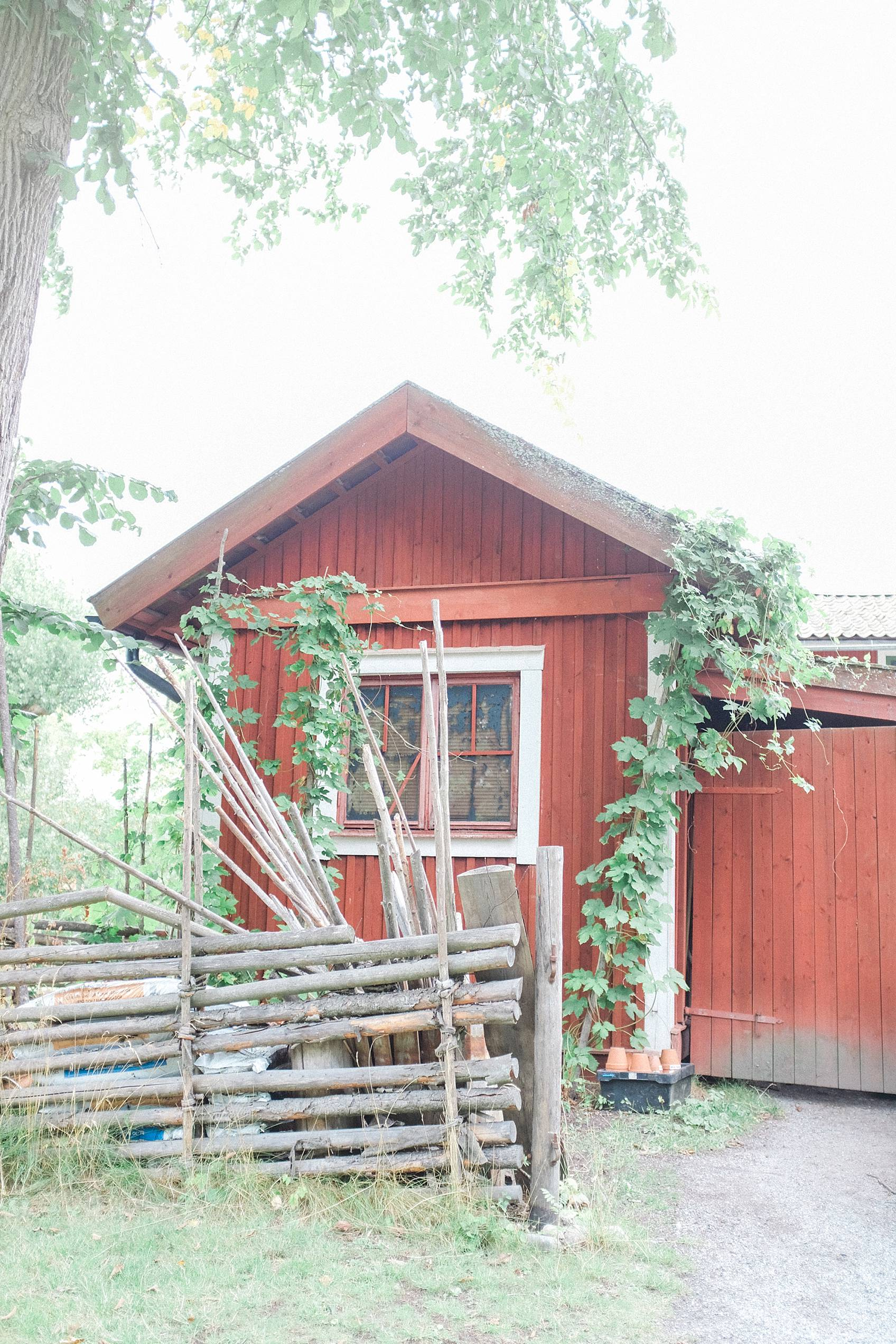 skansen stockholm cottage living decor for inspiration, red house with greenery vines growing