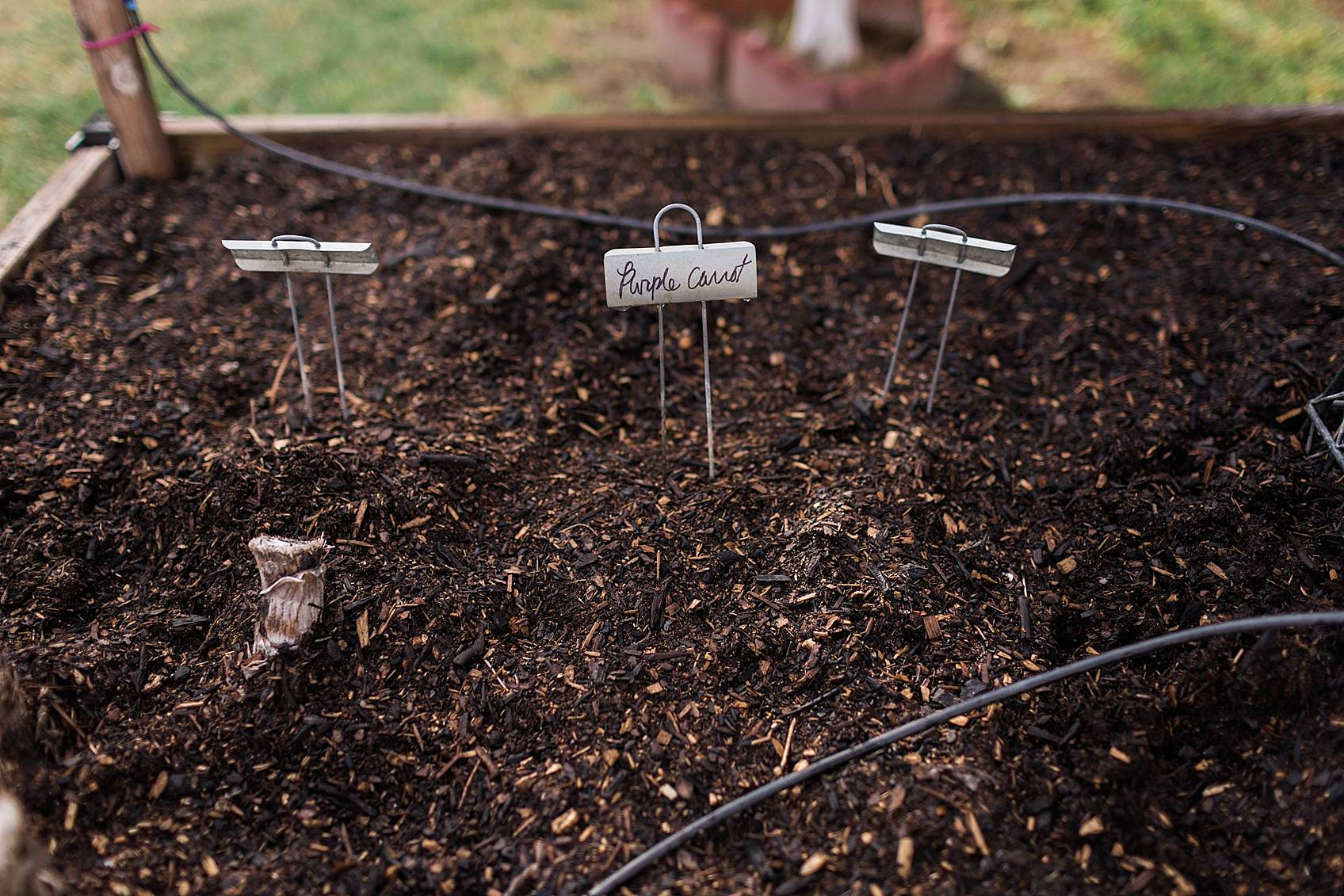 garden labels for seeds so I know what I planted